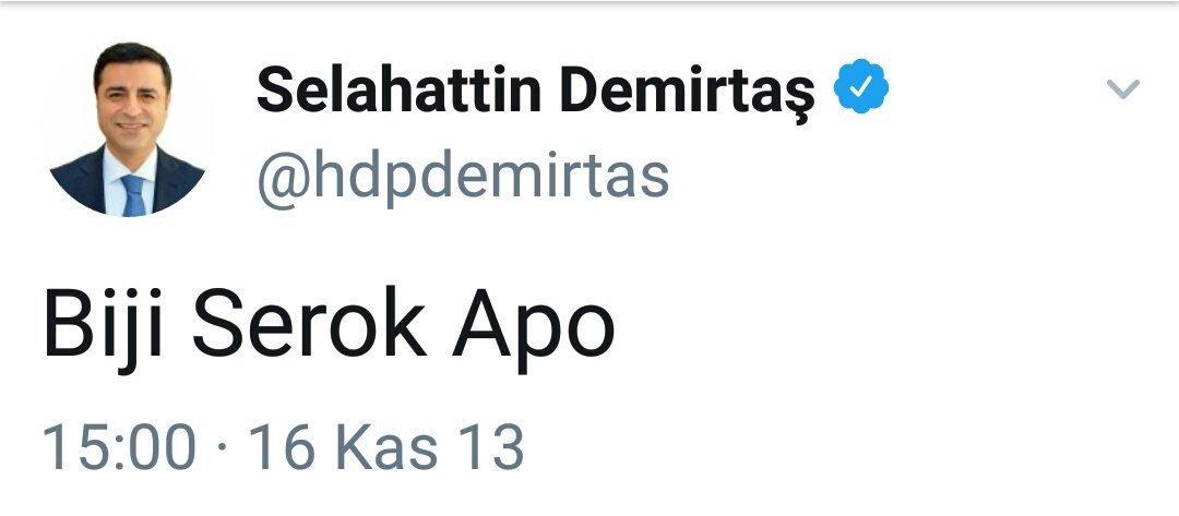 """Avrυpalı Türĸler 🇹🇷 on Twitter: """"HDP'li Selahattin #Demirtaş, PKK terör  örgütü destekçisidir! #demirtasdavasıaihmde olması TERÖR ÖRGÜTÜ destekçisi  olduğu gerçeğini değiştirmiyor!… https://t.co/R8yPv2XGhs"""""""