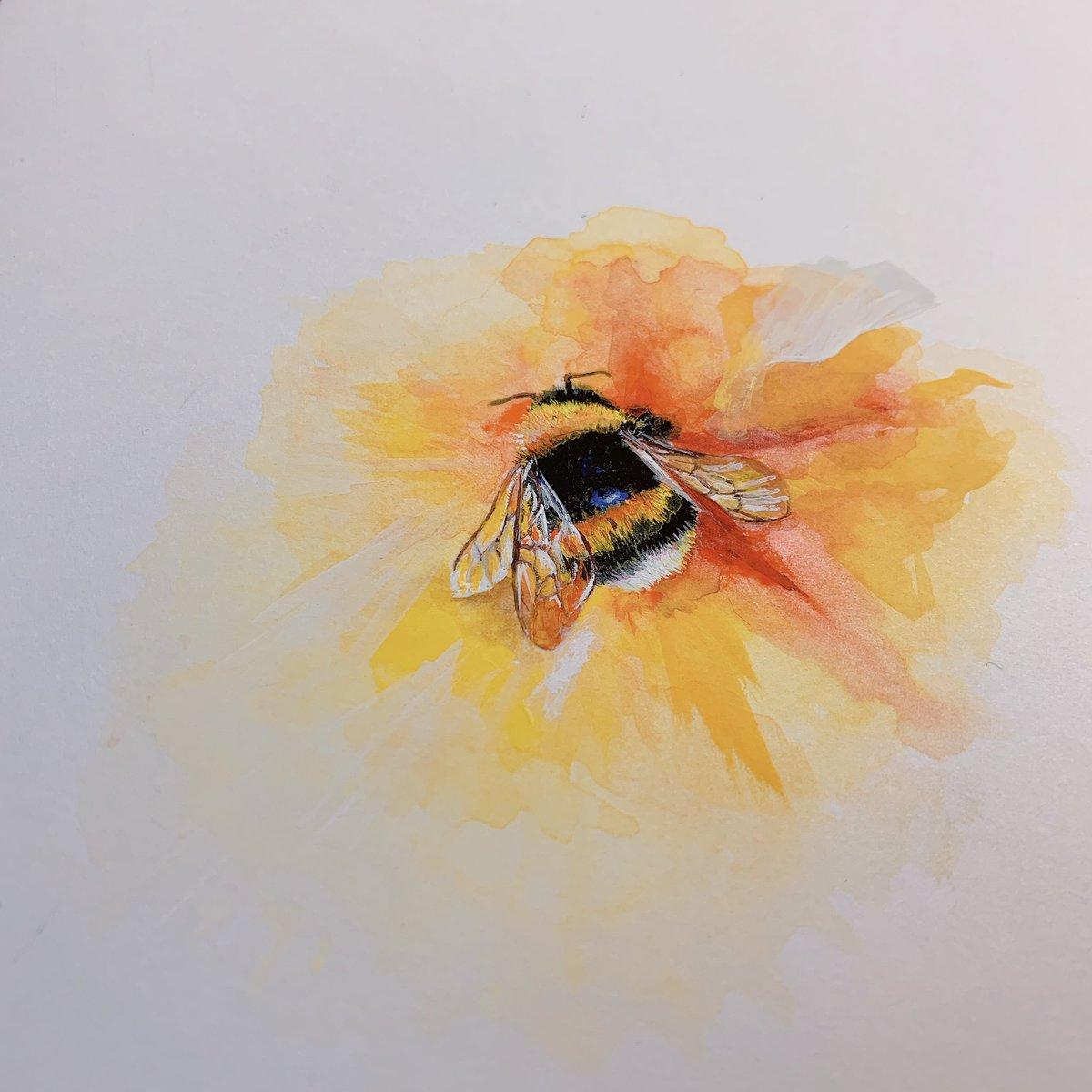 ハチを描いてみました!納得がいかないのでもう一度リベンジしたいです‼︎‼︎