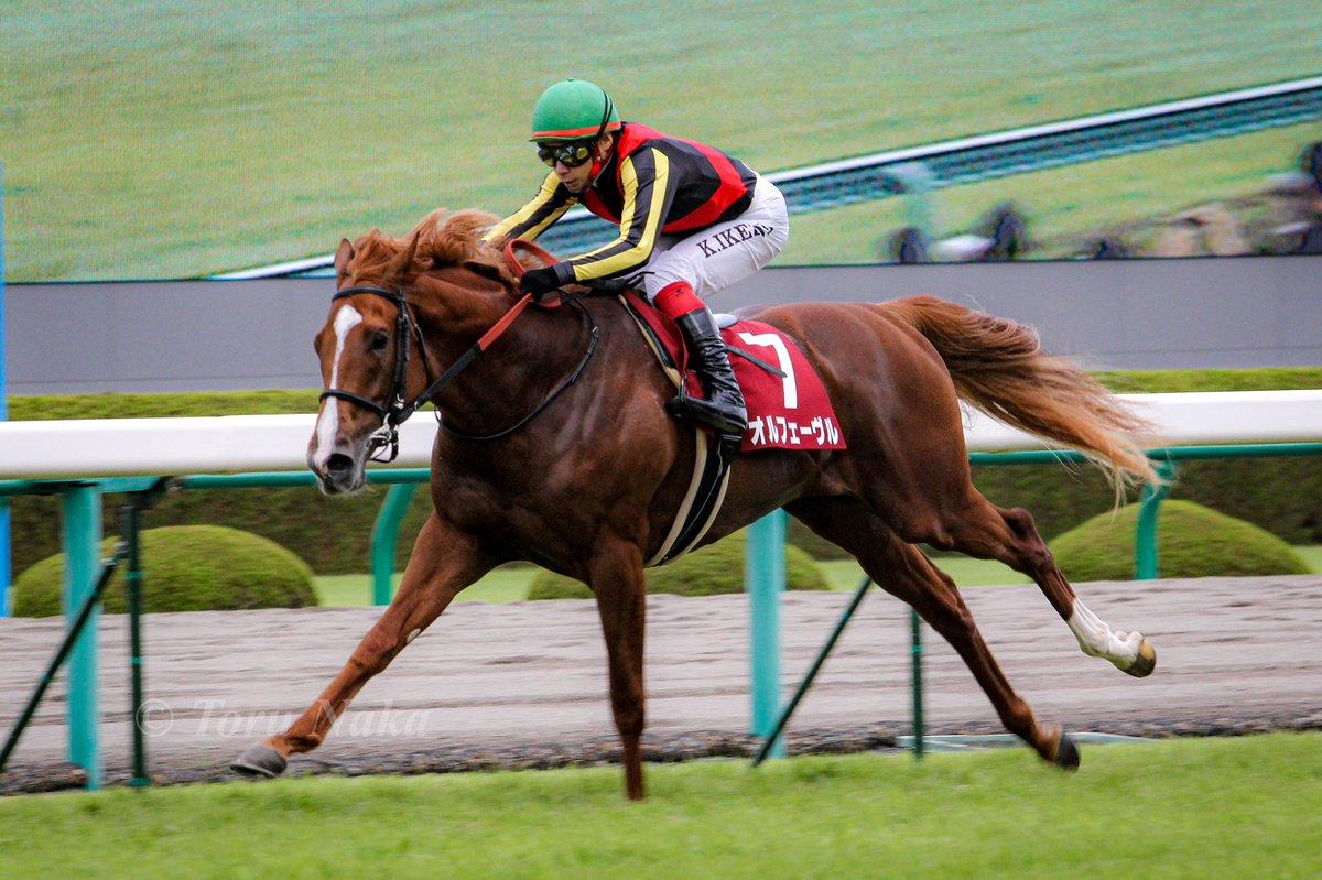 2011.9.25 #神戸新聞杯 #オルフェーヴル  思ったように撮れなくて悔いの残る日でしたが、歓声は凄かったね。 この日競馬場にいてたから、その後某競馬飲み屋とも出会えたので、ある意味思い出深いレース。