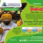 Image for the Tweet beginning: 🐮 Pasadía a Panaca desde