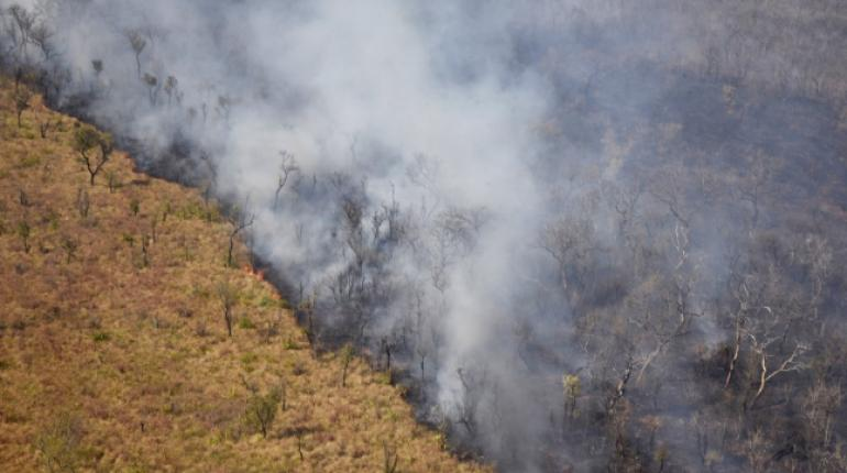 Lots of people #PrayforAmazonas. What not too many people know is that in #Bolivia, since August, forest fires have destroyed twice the surface of New Jersey. This natural catastrophes are fueled by capitalist-made climate change.  We need an alternative. We need #EcoSocialism.<br>http://pic.twitter.com/r2uSI2bIe0