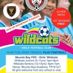 WILDCATS BACK IN ACTION ⚽️👍🏃‍♀️: Sessions continuing to be great under new coach Zoe! Loads of girls having great fun. All girls are welcome from any school or club who are looking to play more, or just to have a go, smile & make friends! @cornwallfa    https://t.co/5rwggOKOvZ