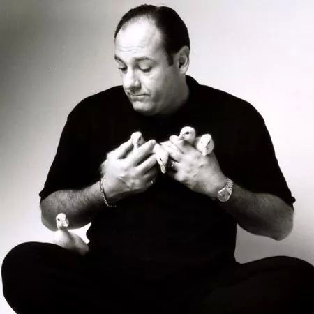 Happy Birthday James Gandolfini! You were a gift to acting and it s such a shame you passed away....