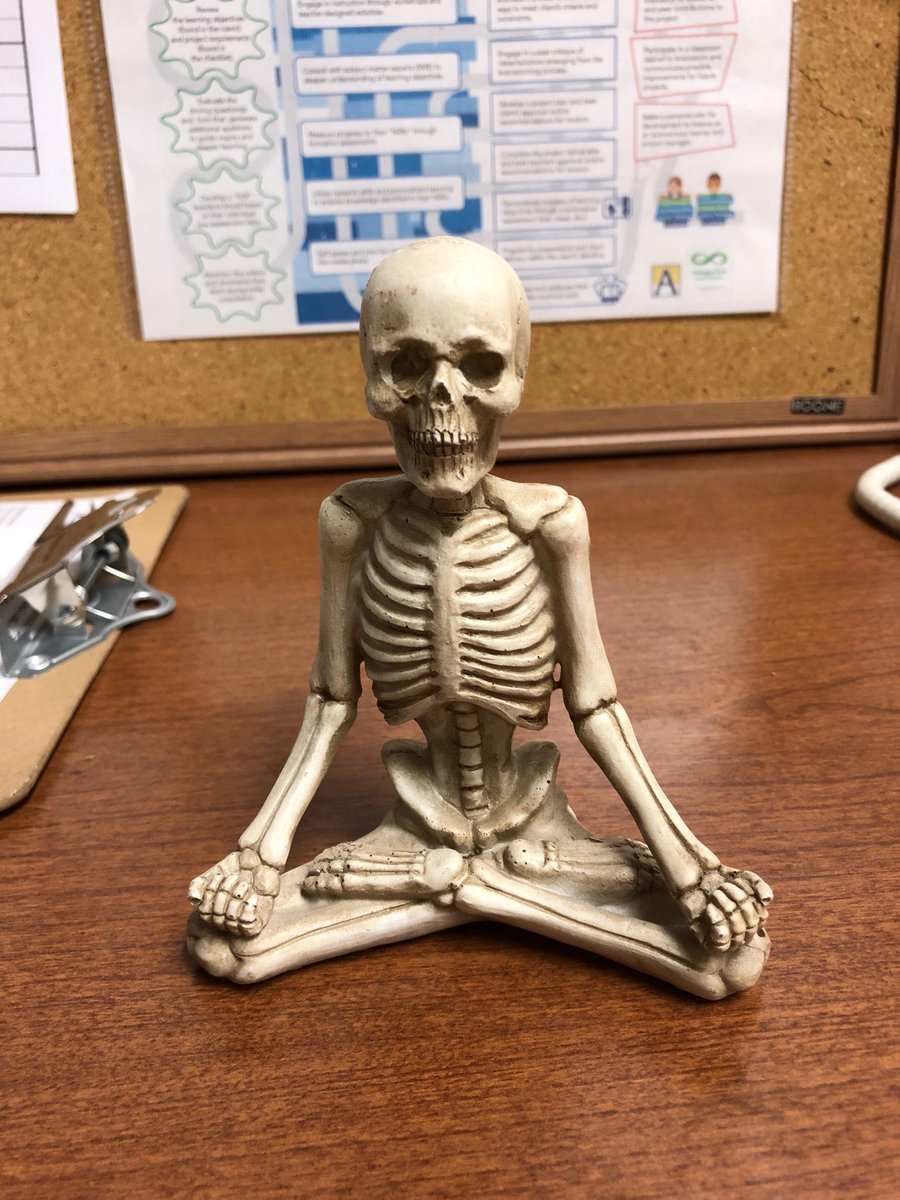 Thank you ⁦<a target='_blank' href='http://twitter.com/Forensicsteach'>@Forensicsteach</a>⁩! You are so thoughtful. This yoga teacher is ready for Halloween! <a target='_blank' href='http://search.twitter.com/search?q=WeAreAcc'><a target='_blank' href='https://twitter.com/hashtag/WeAreAcc?src=hash'>#WeAreAcc</a></a> ⁦<a target='_blank' href='http://twitter.com/APSCareerCenter'>@APSCareerCenter</a>⁩ <a target='_blank' href='https://t.co/2bhjj8JurL'>https://t.co/2bhjj8JurL</a>