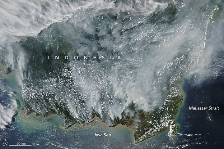 Peat fires in Kalimantan have once again blanketed Borneo in a pall of smoke. earthobservatory.nasa.gov/images/145614/… #Landsat #Indonesia