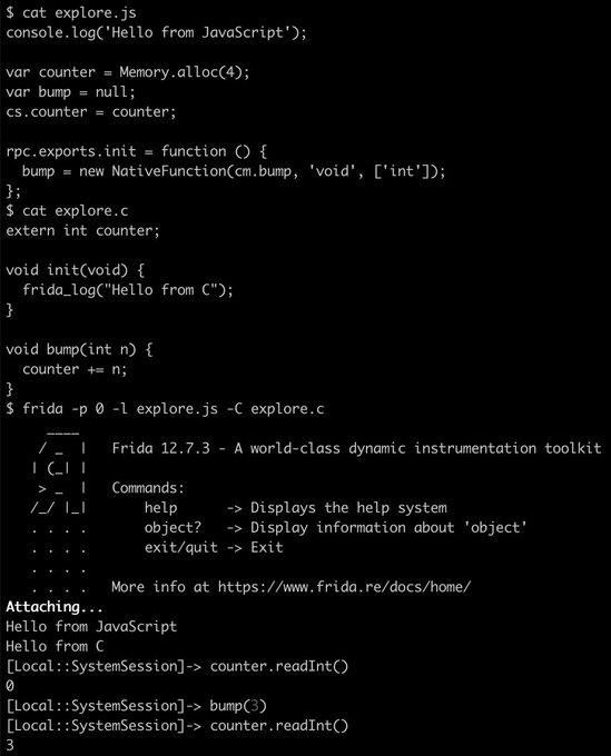 CModule REPL example