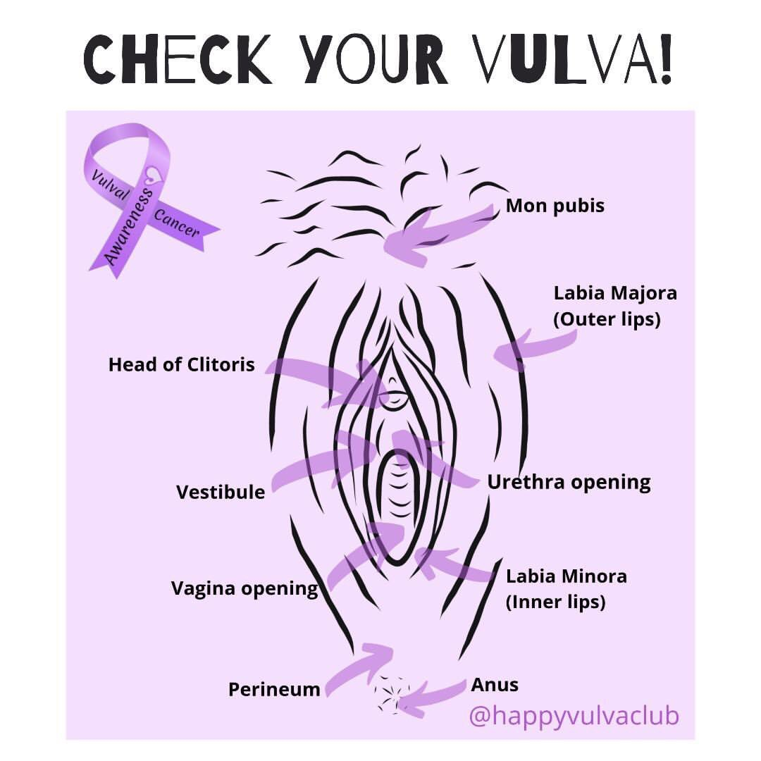 On labia lump outer Bumps On