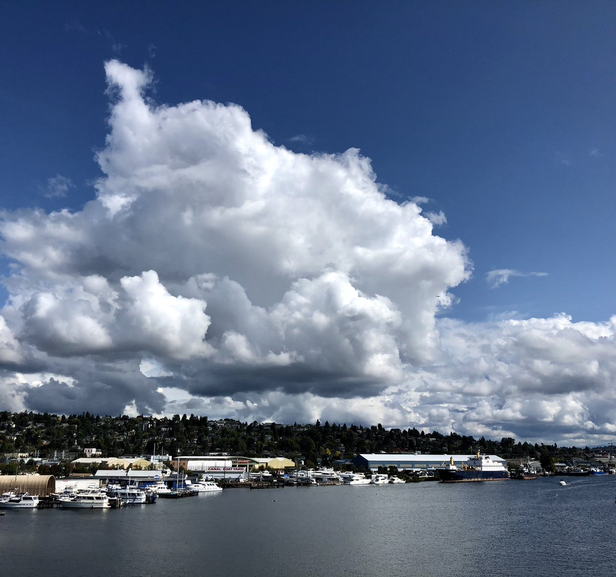 The sky was awesome today. #seattle #endofsummer #Q13FOX<br>http://pic.twitter.com/McAOlBfQZK