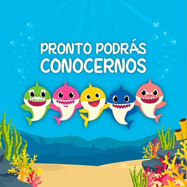 ESTAS LISTO PARA CONOCERNOS?🦈🌊😃🙌 Te esperamos este 9 de Noviembre en Scencia la Molina Adquiere tus entradas en e-ticket ▶️https://t.co/7YgpPZbeem No te lo puedes perder! Baby Shark se preocupa por el medio ambiente 😉 Son 4 únicas funciones: 10am, 12pm, 3pm, 5pm  Lugar: C… https://t.co/HCeDOPrTRp