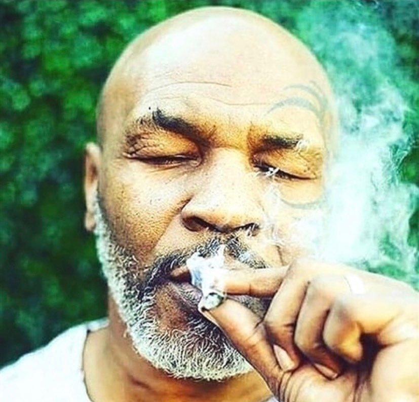 Известных людей курил марихуану марихуана и образование