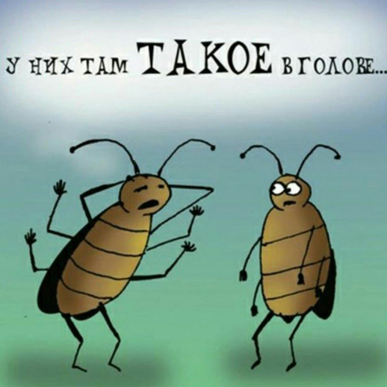 Открытка с тараканами