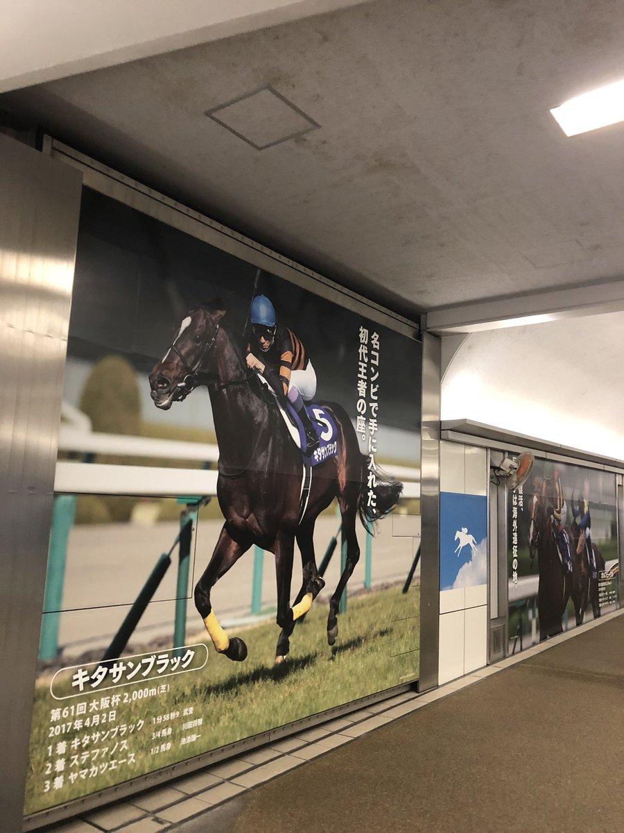 三連単の万馬券を獲ったやつ、キタサンブラックにはお世話になりました。阪神競馬場なう。