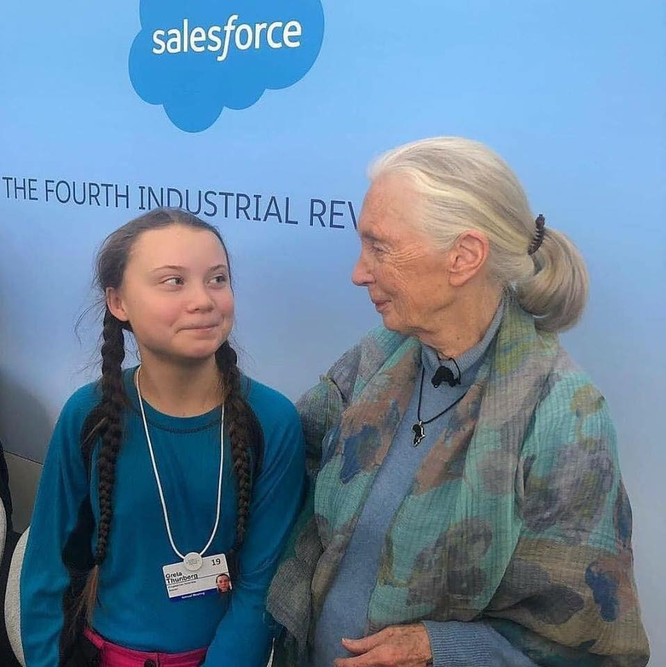 Jane Goodall, the 84-year-old primatologist and conservation expert and Greta Thunberg, a 16-year-old climate activist. The connection, mutual admiration, and quiet determination in their eyes is just beautiful.