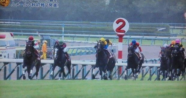 皐月賞馬による神戸新聞杯制覇歴 1954年ダイナナホウシユウ 1974年キタノカチドキ 1976年トウショウボーイ 2005年ディープインパクト 2012年オルフェーヴル 2013年ゴールドシップ 2019年サートゥルナーリア