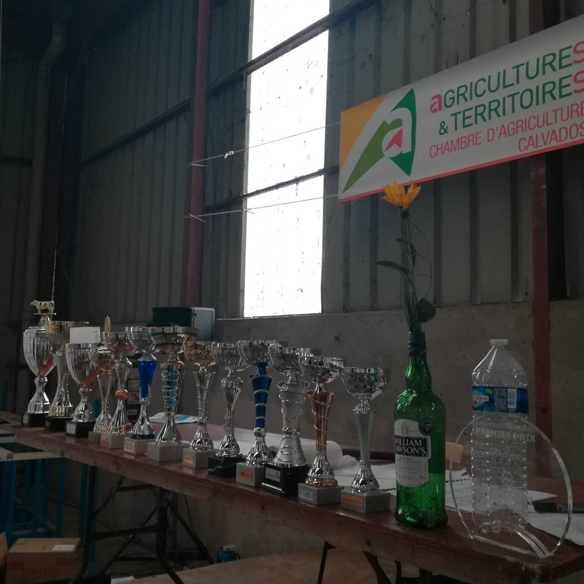 En ce moment même dans le Hall 7, remise de prix du concours race Charolaise et présentation de races allaitantes. #FoiredeCaen #Parcdesexpositions #concourscharolais #chambredagriculture #littoralnormand https://t.co/hi1KMwXX9o