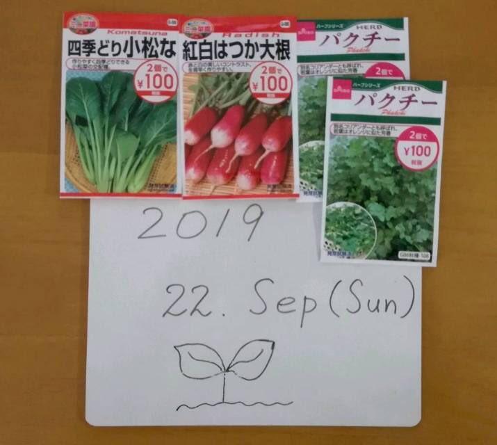test ツイッターメディア - 昨夜、雨降るという予報だったので、ぐっすり寝坊。 起きたら、晴れとるやん。  急ぎ、種まきしました。#ダイソー シリーズです。 昨日いただきました稲わらを散布。 明日、雨降らないかな〜。  肥料無し。   #家庭菜園 #二十日大根 #コマツナ #パクチー #garden #seed #radish https://t.co/xUW6Xcdtt6
