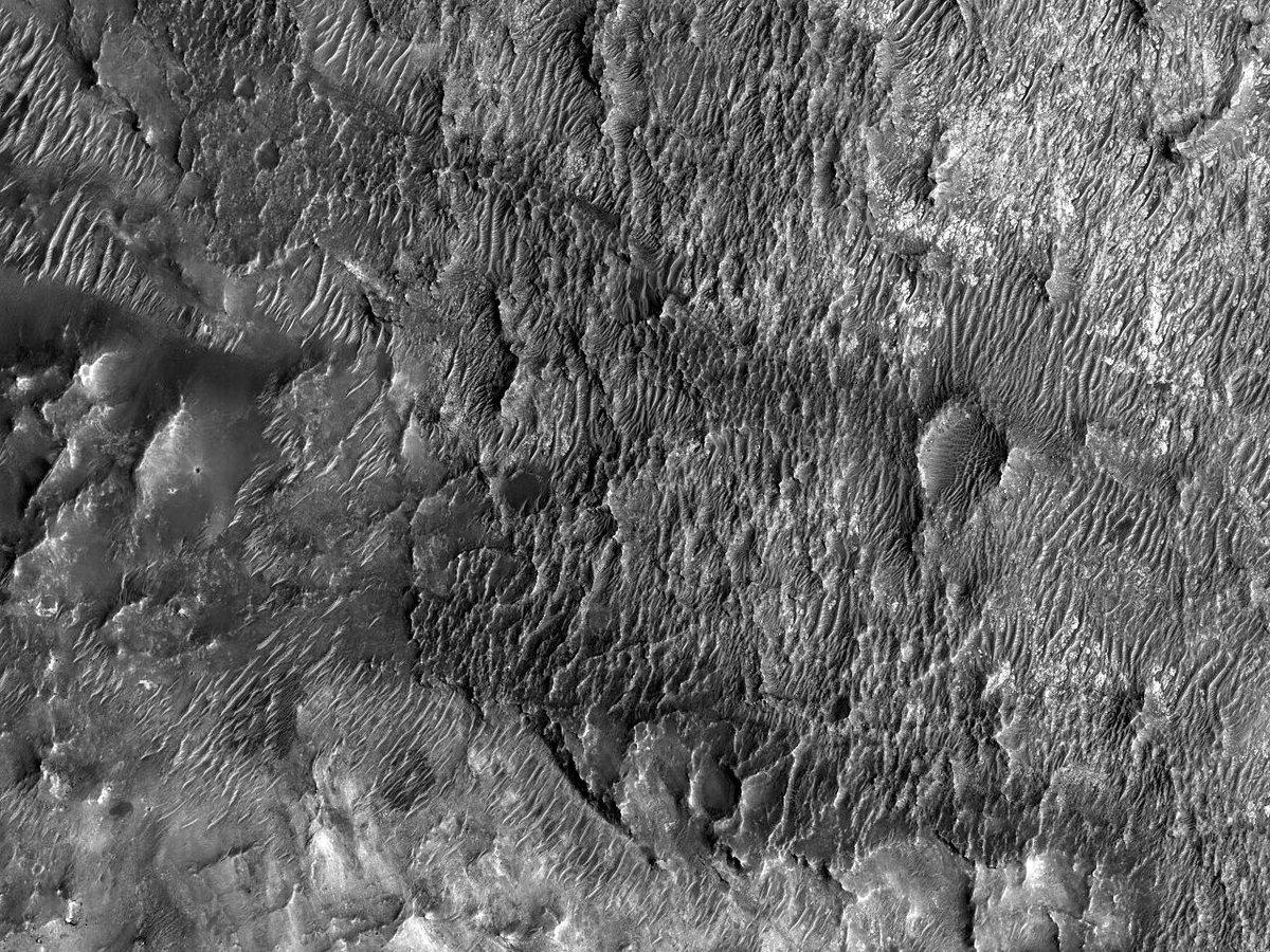 HiPOD 22.09.2019: Smalle zandduinen met duintoppen  Nummer: ESP_040312_1590 Opnamedatum: 03 maart 2015  Hoogte: 255 km  NASA/JPL/University of Arizona https://uahirise.org/hipod/nl/ESP_040312_1590… #Mars #NASA #Dutch #Nederlands #astronomie