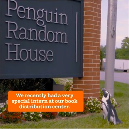 Penguins at Penguin Random House! https://t.co/0oYb8HPtyA https://t.co/4hqSnDG6ox