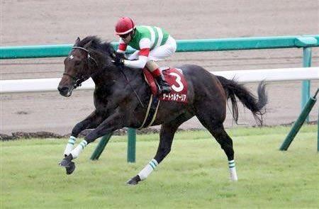 🐴サートゥルナーリア、天皇賞・秋に向かう予定ですが、騎手が、注目ですね⁉️⁉️#サートゥルナーリア