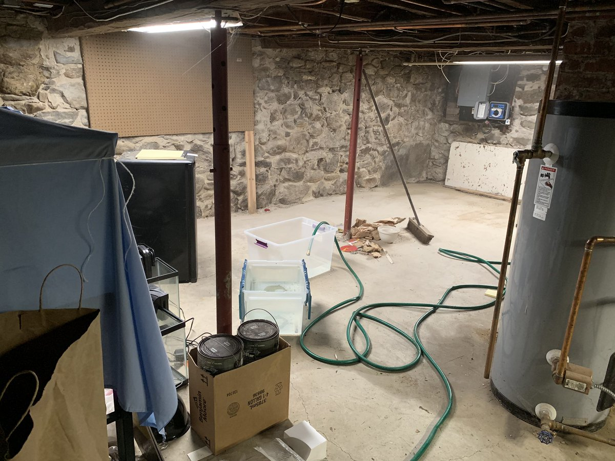 Basement Shop Wiring