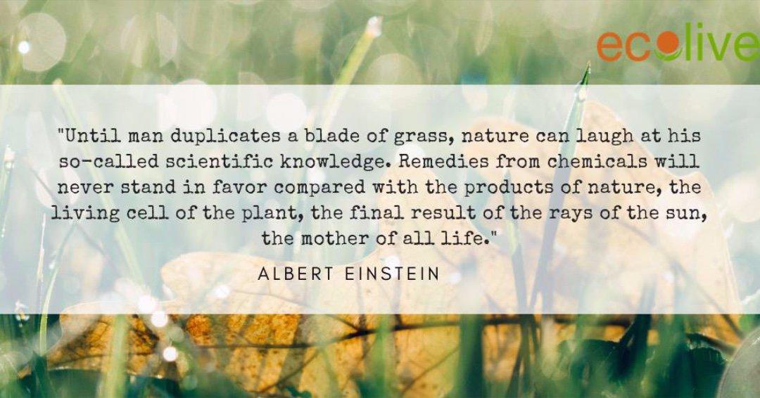 #Profound #EatLocal #RespectNature #ecolive #HealthyLives #NatureCanHeal