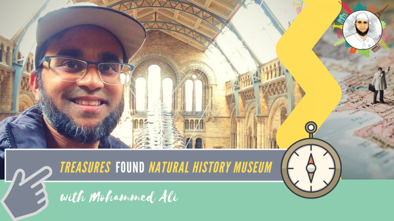 On the #move There are so many #FreeThings to do in #London. #Treasures found in #NaturalHistoryMuseum. A world-leading #VisitorAttraction in #SouthKensington! #BrandNew on #YouTube: https://rebrand.ly/Discover-Natural-History-Museum… #TuesdayThoughts #LondonBus #MohammedAli https://booki.ng/2sUjRpI