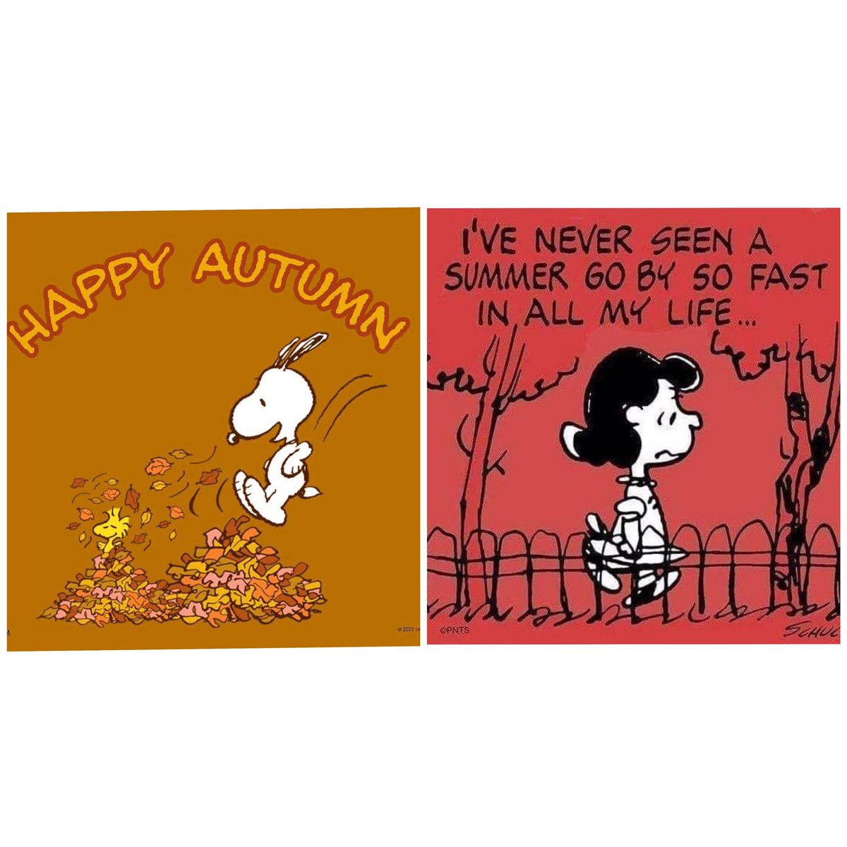Happy Autumn!! 🎃🍁. It's the most wonderful time of the year  #happyautumn #byesummer #TuesdayThoughts