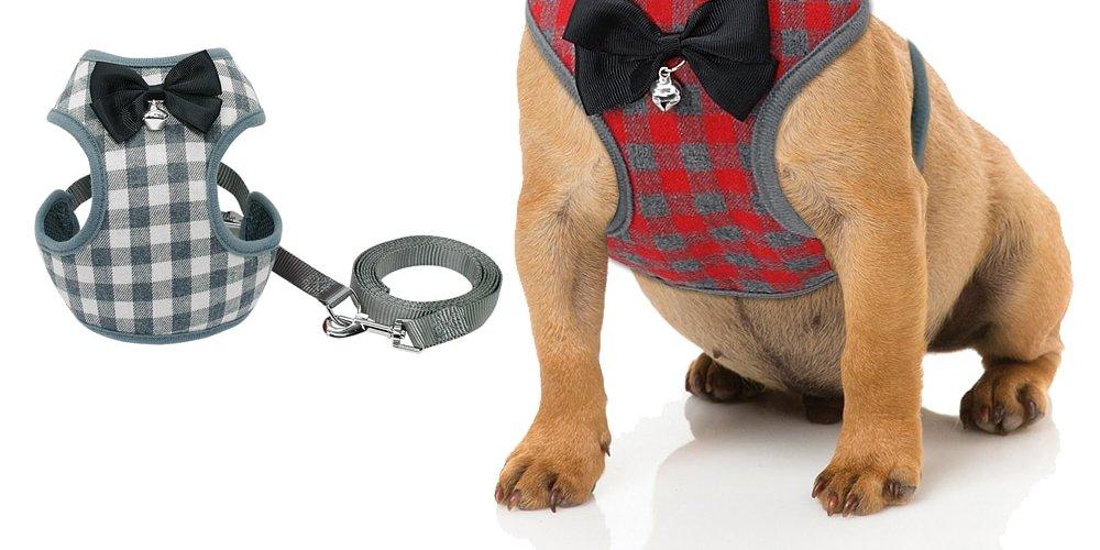 #animal #cute Arnés para Perros Pequeños con Pajarita y Correa