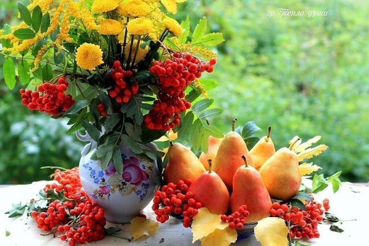 своим открытки с осенними цветами с добрым утром среднем