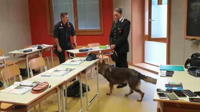 Controlli antidroga dei carabinieri al Follador di...