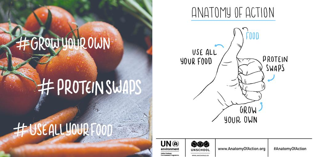 It's day 8 of this great campaign which looks at food and its impact on our environment... Why not take a look and commit to an action? And make sure you share what you've been up to #anatomyofaction   https://t.co/jxO2ehe3oO https://t.co/UQawYAhiaX