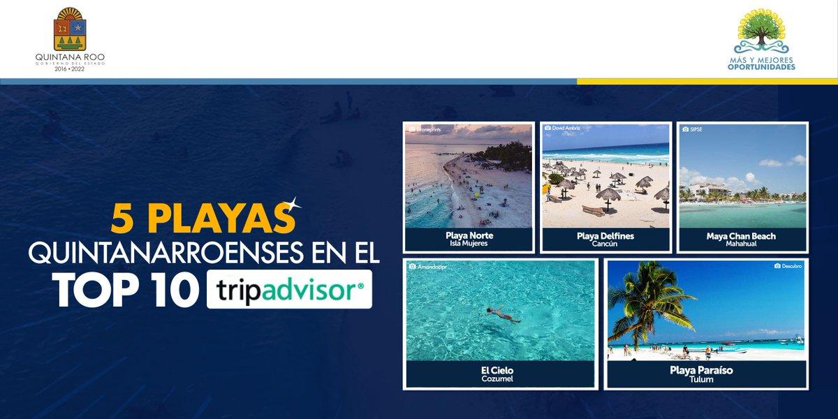 🏆Cinco destinos quintanarroenses fueron elegidos en el top de las 10 mejores playas de #México en los Travellers' Choice de @TripAdvisor, la plataforma líder en reseñas turísticas. Seguimos posicionándonos como la #JoyaTurísticadeMéxico.🇲🇽 @SedeturQROO @CPTQROO