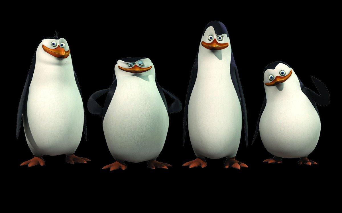Картинки из мультиков пингвины мадагаскара