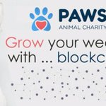 Image for the Tweet beginning: PAWS is entering e-commerce with