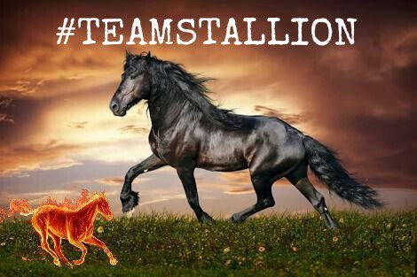 RT2Gain 🔥Follow All Who Retweet & Like This ▪️#TEAMSTALLION #1DDrive 🔥#FollowsEli @Eyren23 @lovecelticwoman @VivaciousStar2 @LeillaLuna @kleinslag @Luca25__ @Carla56725378 @tadayokun @YNHallak @slyfox6057 @Crysd3 @ShahnewazTameem
