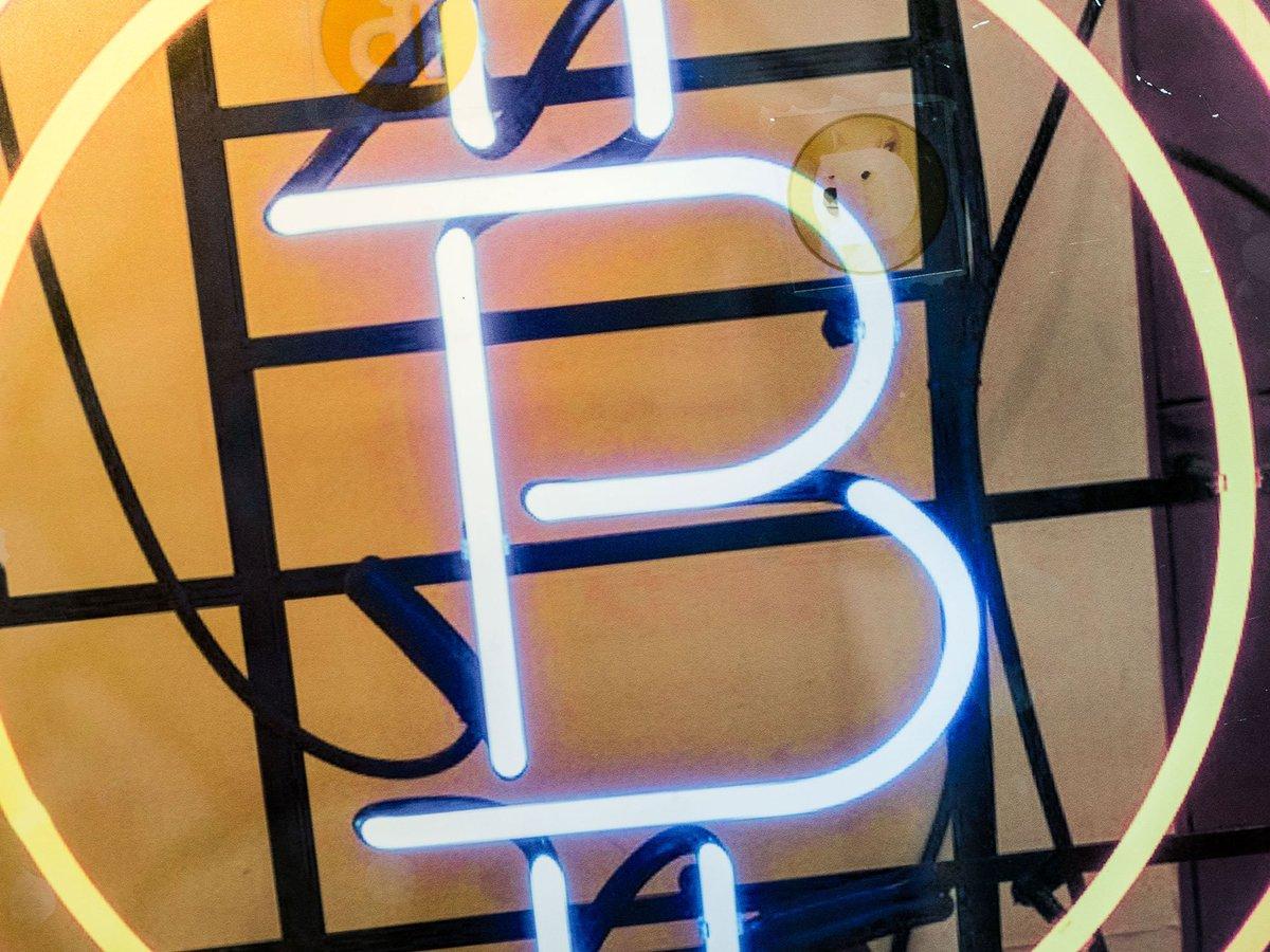 ビットコイン、6月以来の9000ドル割れ-他の仮想通貨も急落