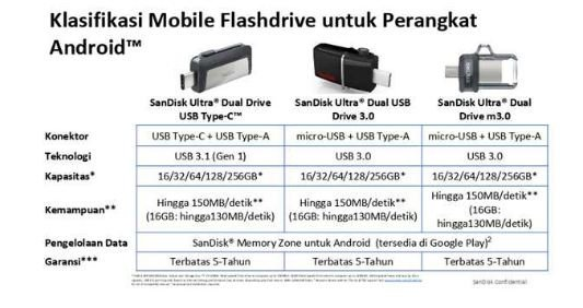 Sandisk Dual Drive