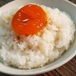 ご飯の上に宝石が!?ご飯が進み過ぎる「卵黄の琥珀漬け」の作り方!