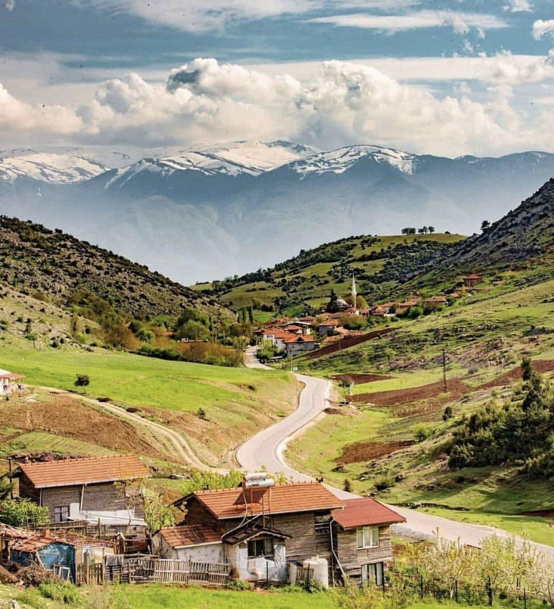 Uçun kuşlar uçun, doğduğum yere. Şimdi dağlarında mor sümbül vardır. #AhmetKaya