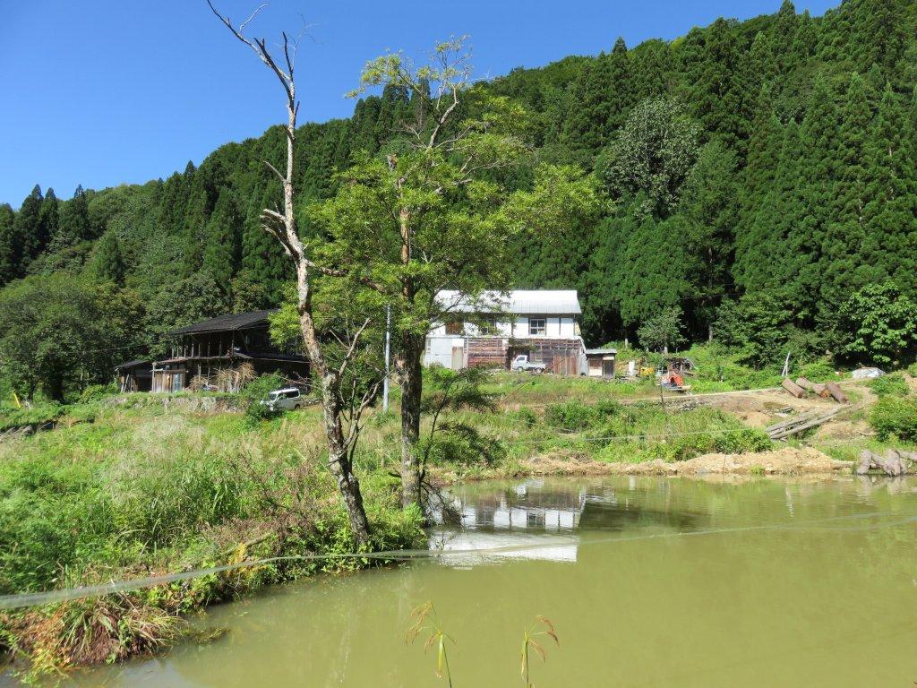 大多和集落には元々6軒の家屋があり、現在は母屋が4軒、板倉(納屋)が2軒残っている。今でも元住人の方によって管理されており、Hさんにいたっては毎日のように通われて畑仕事をされている。離村はS45年。時代の流れとともに、山での仕事が無くなってしまったのだ。