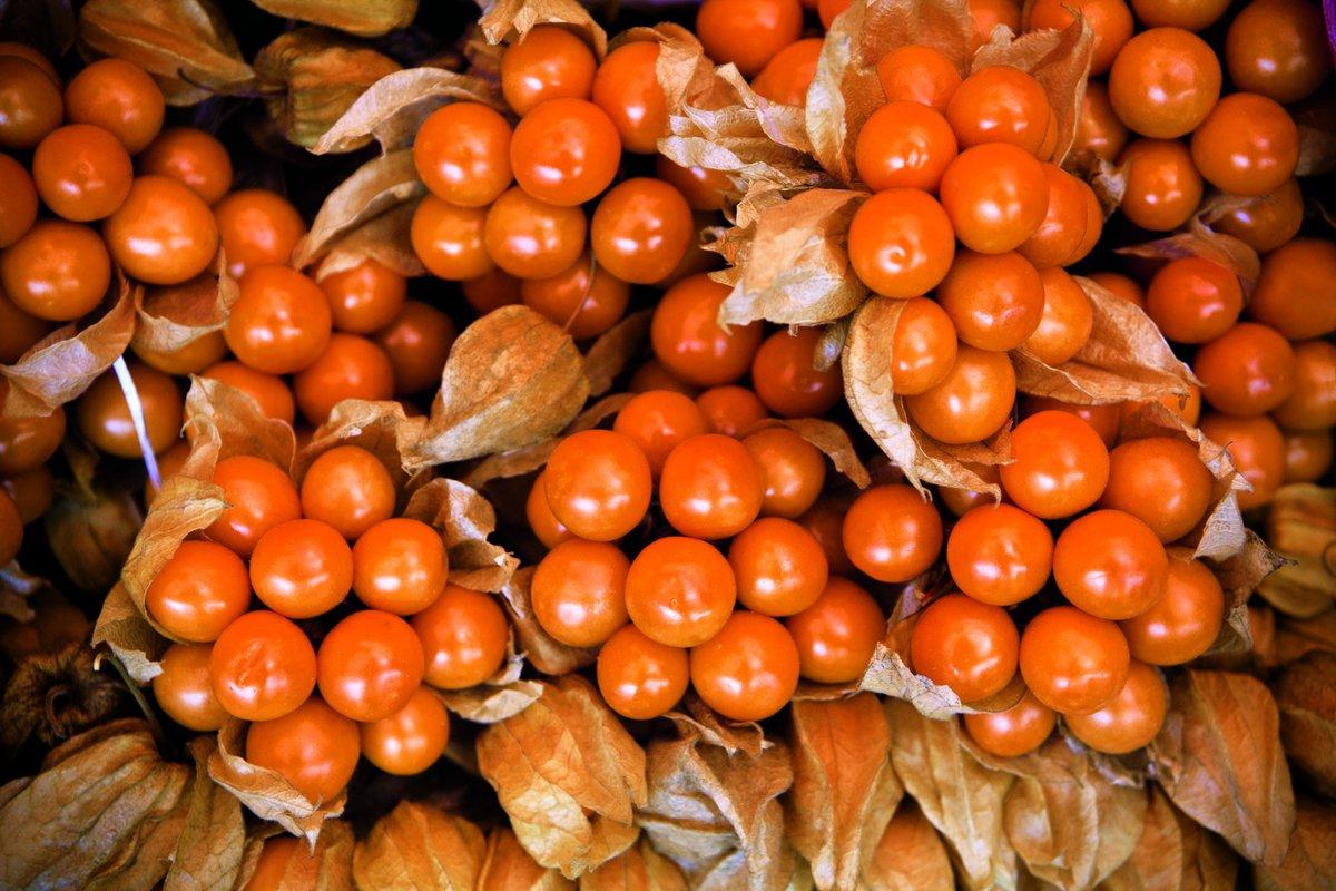 fruta peruana para la diabetes