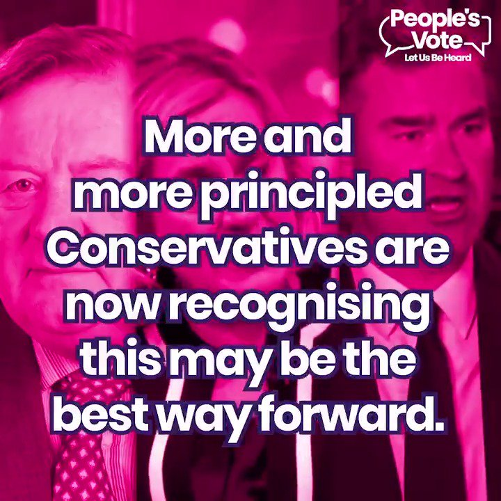 WATCH: Ken Clarke, Amber Rudd, David Gauke - all principled Conservative MPs who are now recognising that a #PeoplesVote may well be the best way forward out of the #Brexit crisis. Please RT: