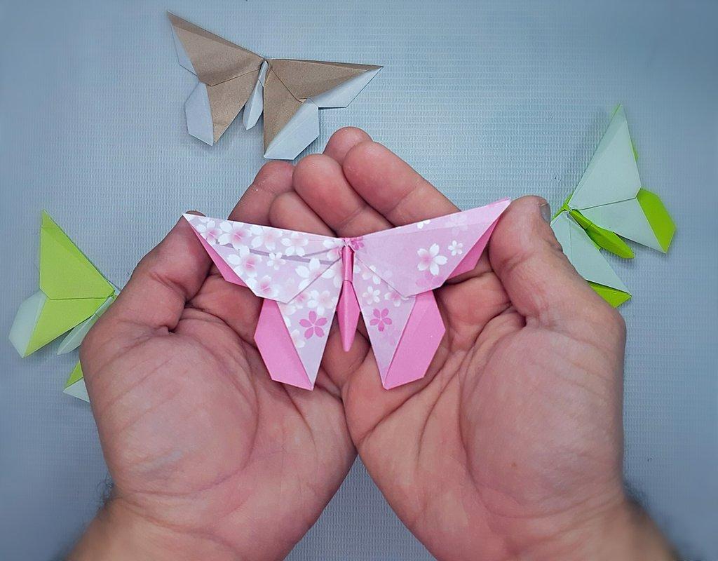 Paper Metamorphosis, Beautiful Looking Origami Butterflies | 800x1024