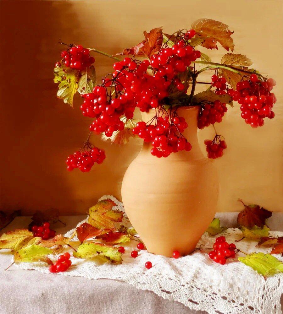 Букет калины означает, цветов роза роз