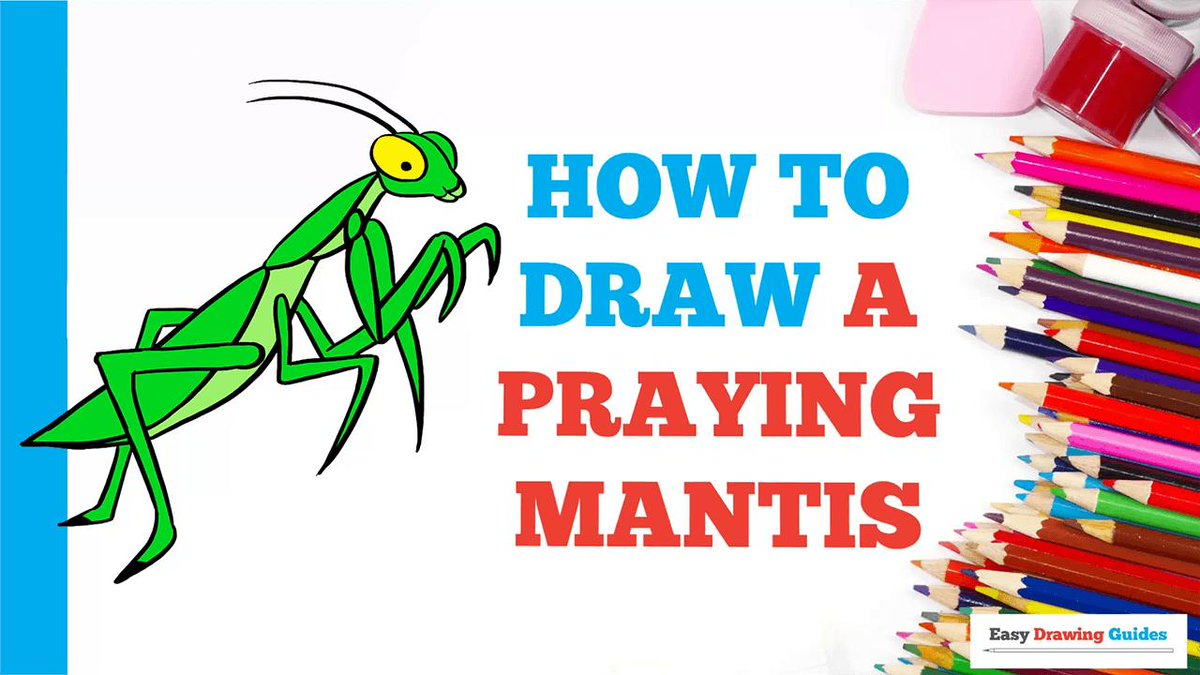 Easy Drawing Guides On Twitter How To Draw A Praying Mantis