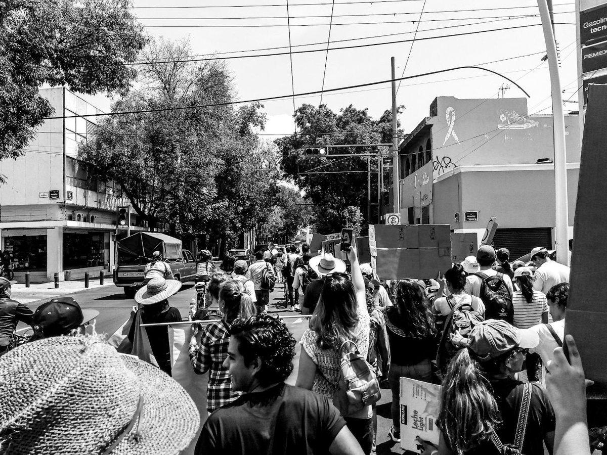 Las y los jóvenes marcharon para defender el futuro de la tierra. @FFFGDL