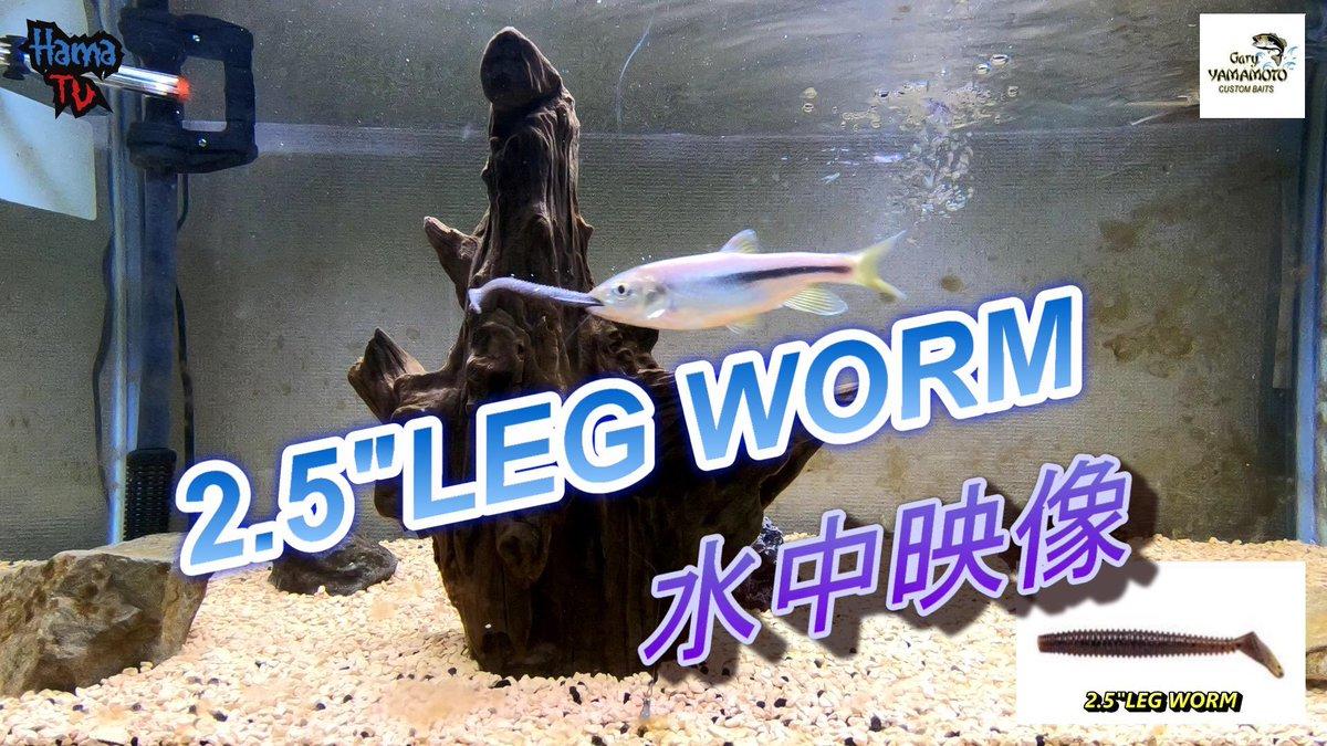 "Gary YAMAMOTO   2.5/"" LEG WORM   Japan Package"