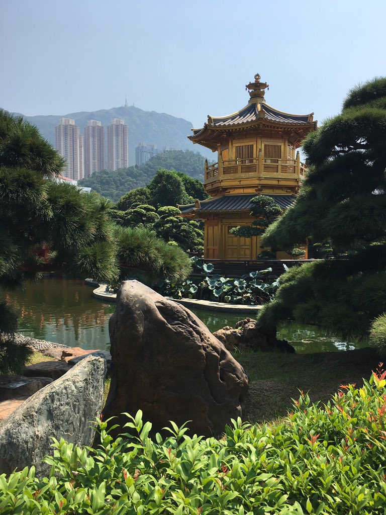 Having an amazing time in #HongKong with @seanpeacock_ #holiday #adventure #adventures #travel #travelAsia #travelHongKong pic.twitter.com/qYNPRERftp