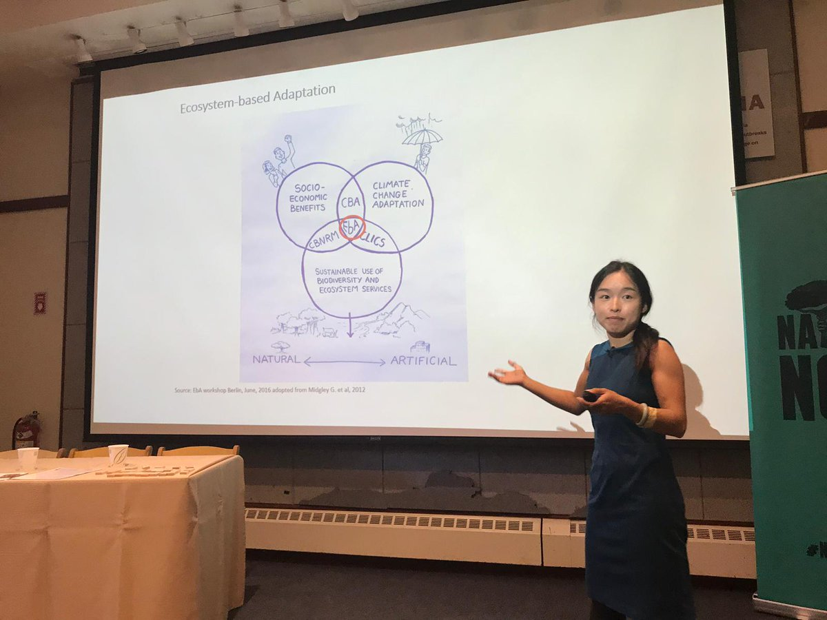 Our event @ #ClimateWeekNYC: we have so much to learn from the global south on adaptation+ #naturebasedsolutions. They are at the frontline, they are the ones experimenting. We need to find better ways of learning from and with them. Thanx Xiaoting + @SaleemulHuq for insights