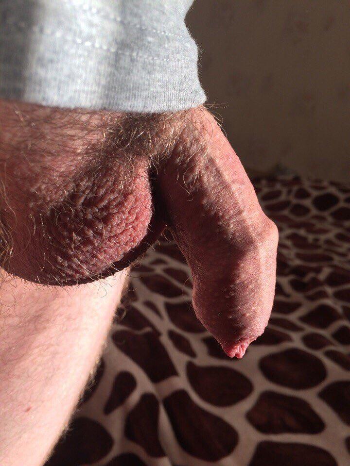 Hairy balls sack of the gods